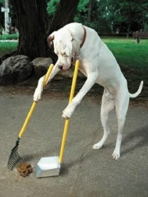 Však si po sobě uklidím.