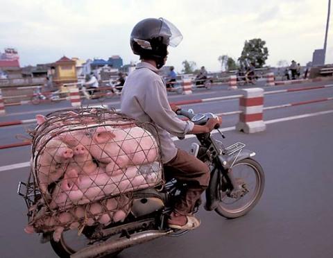 Co uveze motorka? (1)
