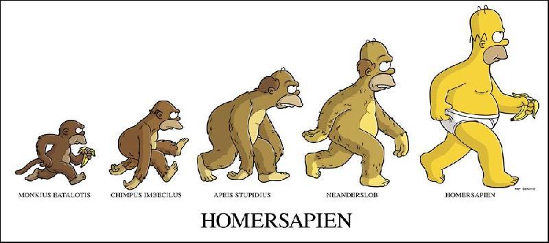 Vývoj podle Homera