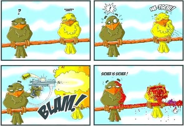 Prevence proti ptačí chřipce.